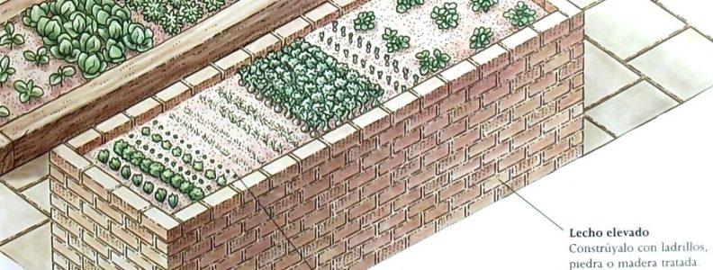 cultivos en lecho elevado